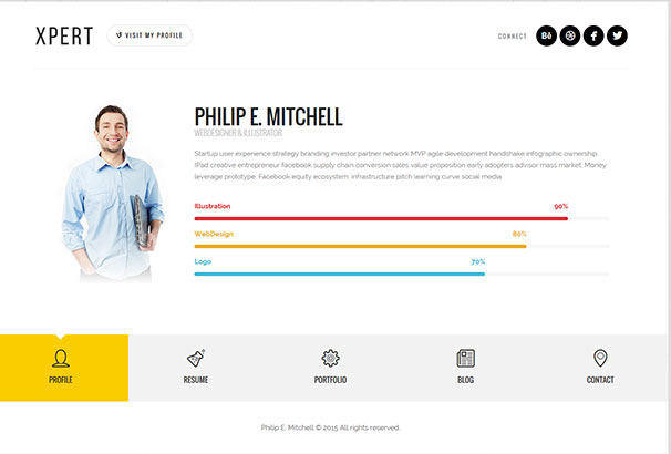 ThemeFurnace  Wordpress Resume Themes