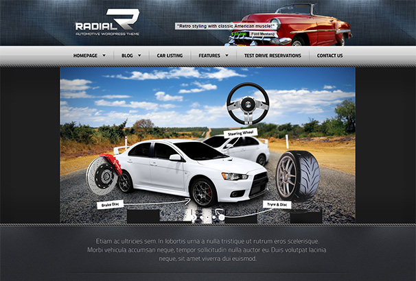 128 themeforest Radial