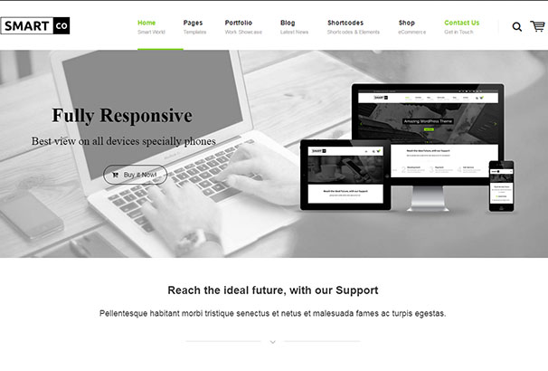 19 themeforest SmartCo