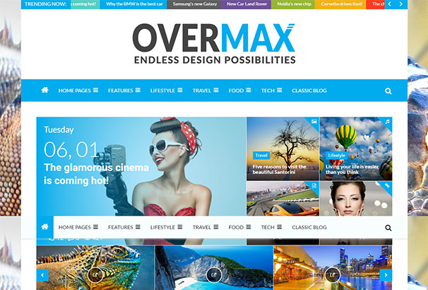 8 themeforest Overmax