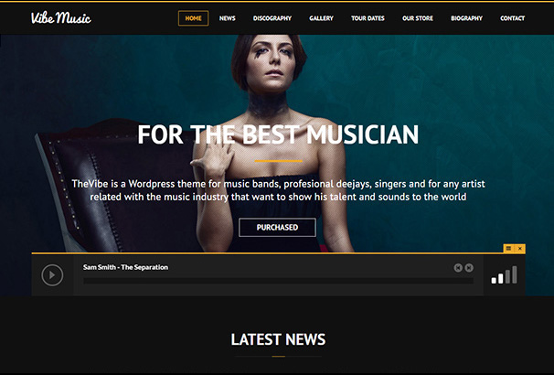 themeforest 15 ViberMusic