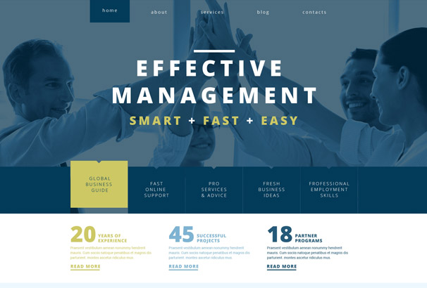Effective Management WordPress Theme