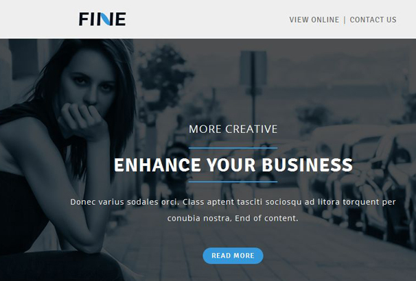 fine-multipurpose-responsive-email-template-stampready-builder