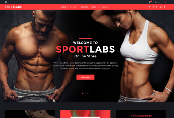 sportlabs-woocommerce-theme
