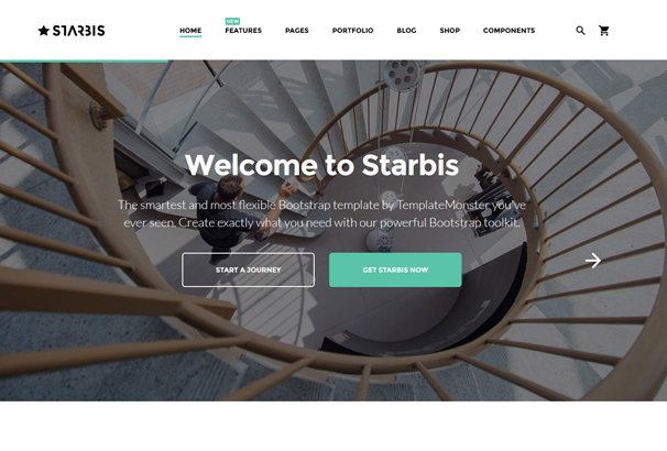 starbis-multipurpose-website-template-for-business