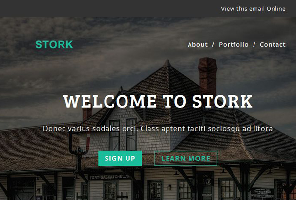 stork-multipurpose-responsive-email-template-stampready-builder