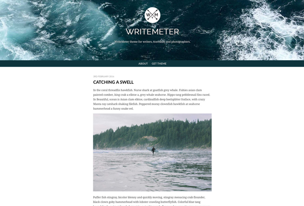writemeter-theme