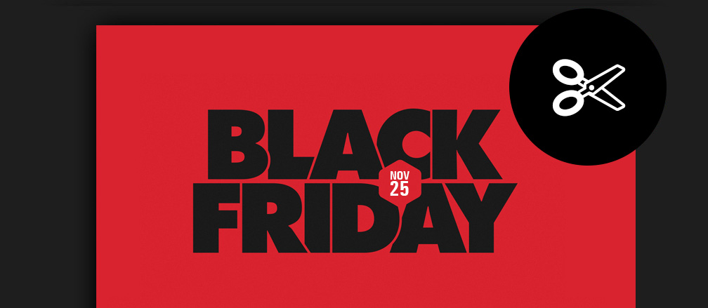 WordPress Black Friday Deals Coupons & Offers 2016